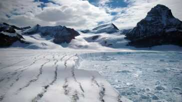 Un Tiers Des Plates Formes De Glace De L'antarctique Pourrait S'effondrer