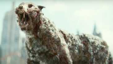Valentine Le Tigre Zombie A Des Fans Super Excités Pour