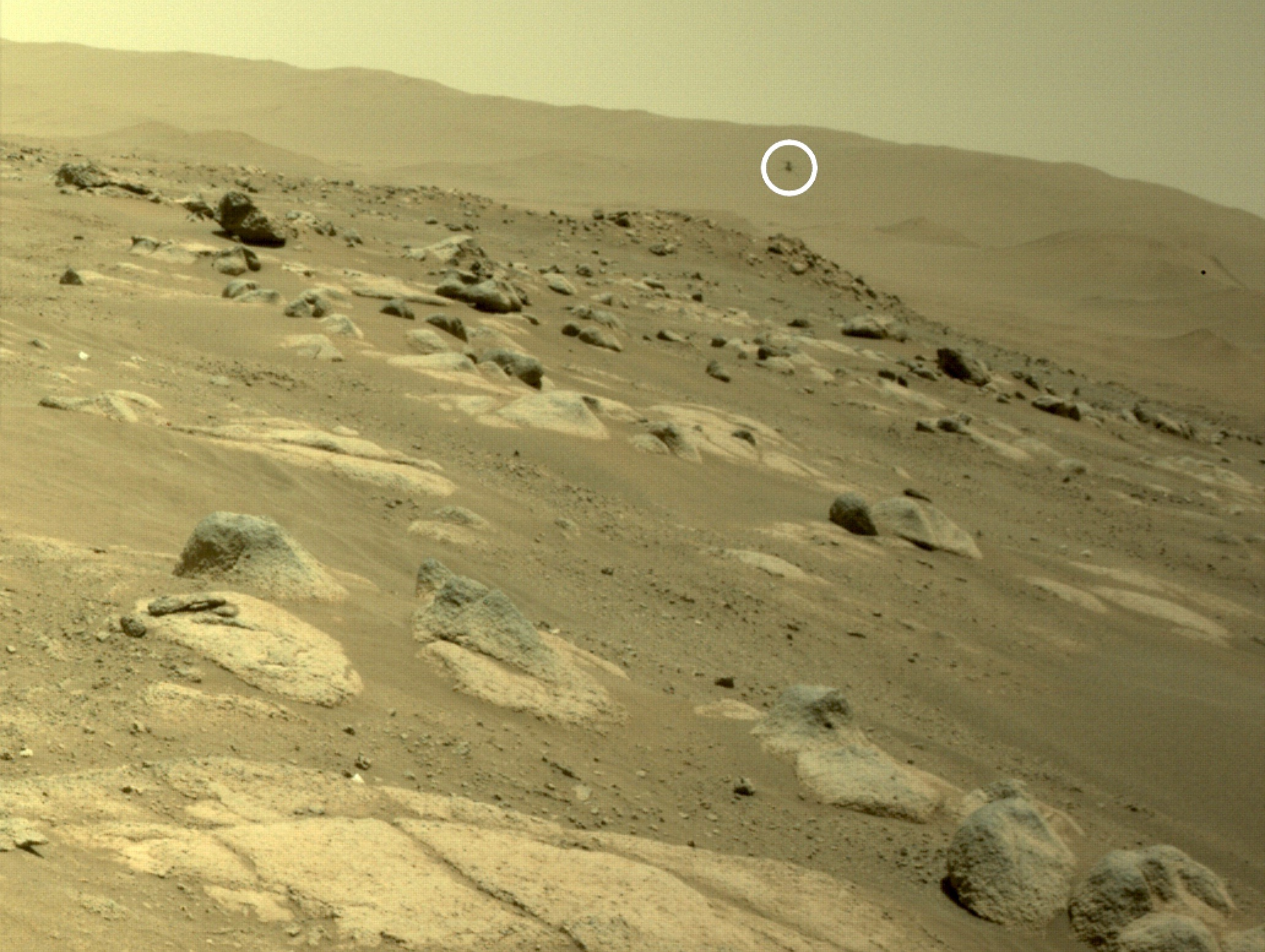 Le rover Mars Perseverance de la NASA a capturé cette vue de l'hélicoptère d'ingéniosité volant le 30 avril 2021.