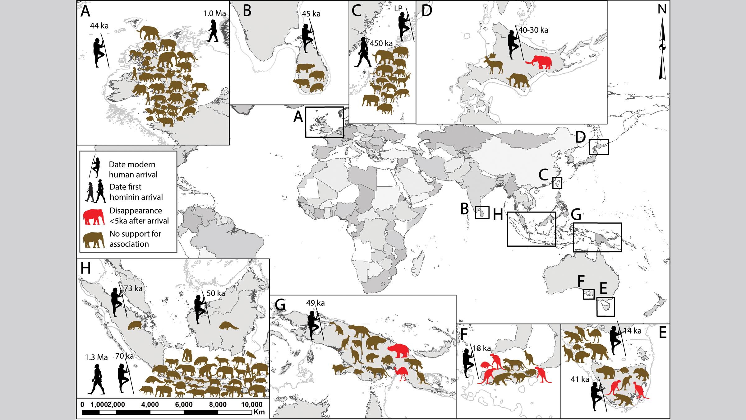 Groupes d'îles continentales (terres qui étaient reliées aux continents à des moments de l'histoire, mais qui sont maintenant des îles) qui ont des preuves d'hominidés du Pléistocène et d'extinction animale.  Dans le sens des aiguilles d'une montre à partir du haut se trouvent (A) la Grande-Bretagne;  (B) Sri Lanka;  (C) Taiwan;  (D) Hokkaido;  (E) King Island et Tasmanie;  (F) Île Kangourou;  (G) Nouvelle-Guinée;  et (H) Bornéo, Java et Sumatra.  LP, Pléistocène tardif