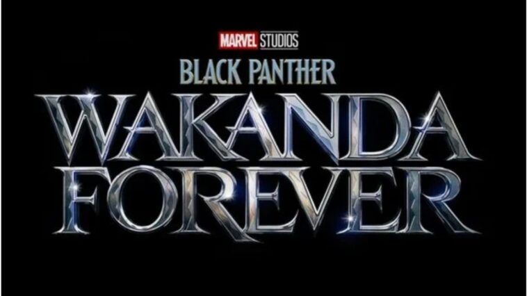 Synopsis officiel de «Black Panther: Wakanda Forever» révélé