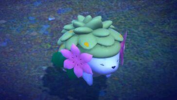 Nouveau Pokémon Snap: Mysterious Pokémon Shaymin 4 étoiles, Poses