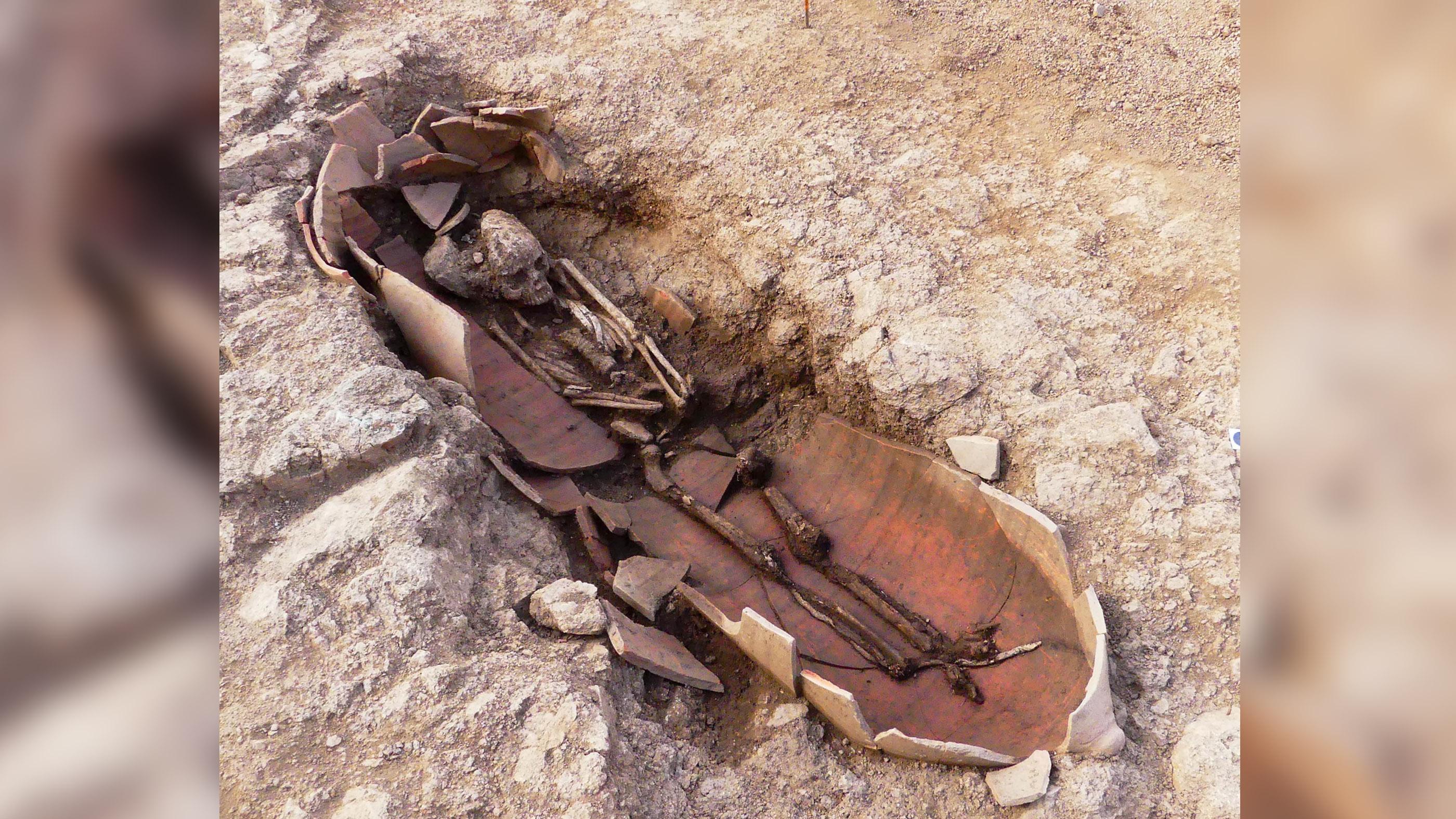 Dans l'ancienne nécropole de Corse, les archéologues ont découvert que certains des restes humains avaient été enterrés dans des pots d'amphores.