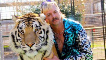 Tiger King a reçu un diagnostic de cancer;  plaider pour leur libération