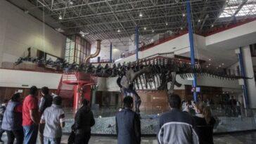 Des Paléontologues Mexicains Identifient Un Nouveau Dinosaure `` Bavard '',