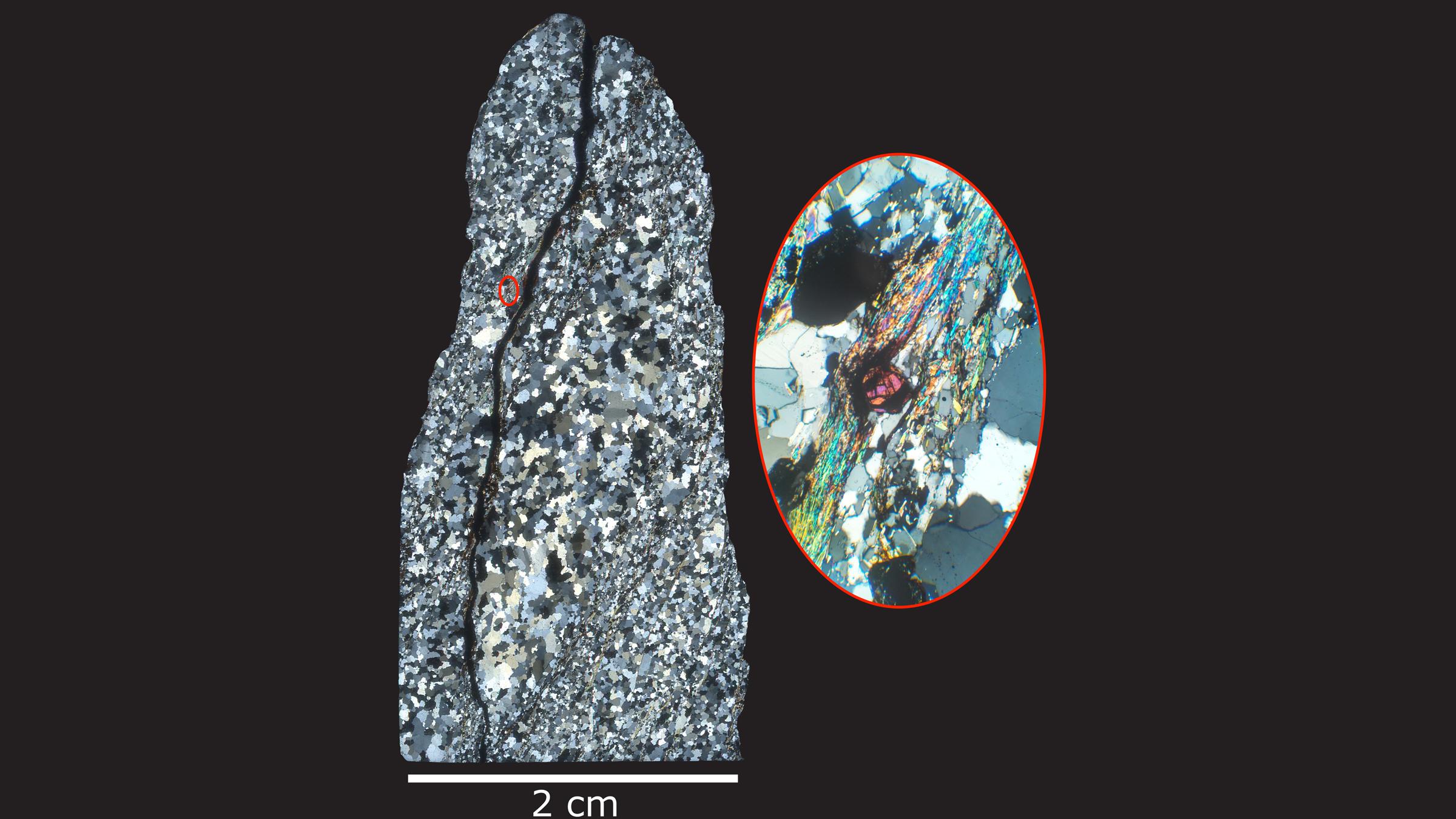 Un microscope spécial a permis aux chercheurs d'identifier d'anciens zircons (magenta) dans des échantillons de roche de Jack Hills.