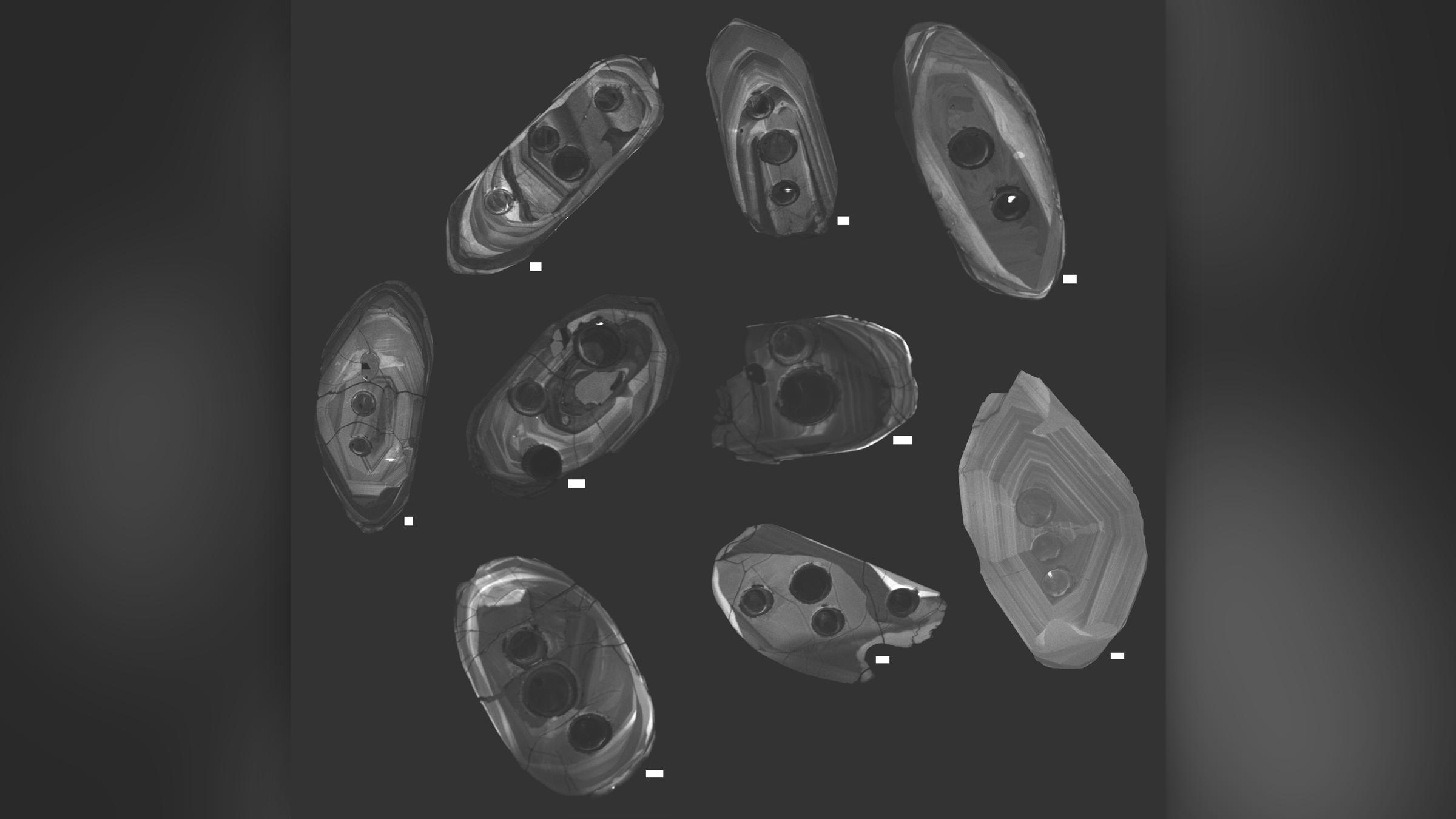 Cristaux de zircon qui ont été photographiés par cathodoluminescence, une méthode qui a permis à l'équipe d'imager l'intérieur des cristaux à l'aide d'un microscope électronique à balayage spécialisé.  Remarquez les cernes sur les zircons - ce sont des cavités laissées par le laser qui a été utilisé pour déterminer l'âge et la chimie des zircons.