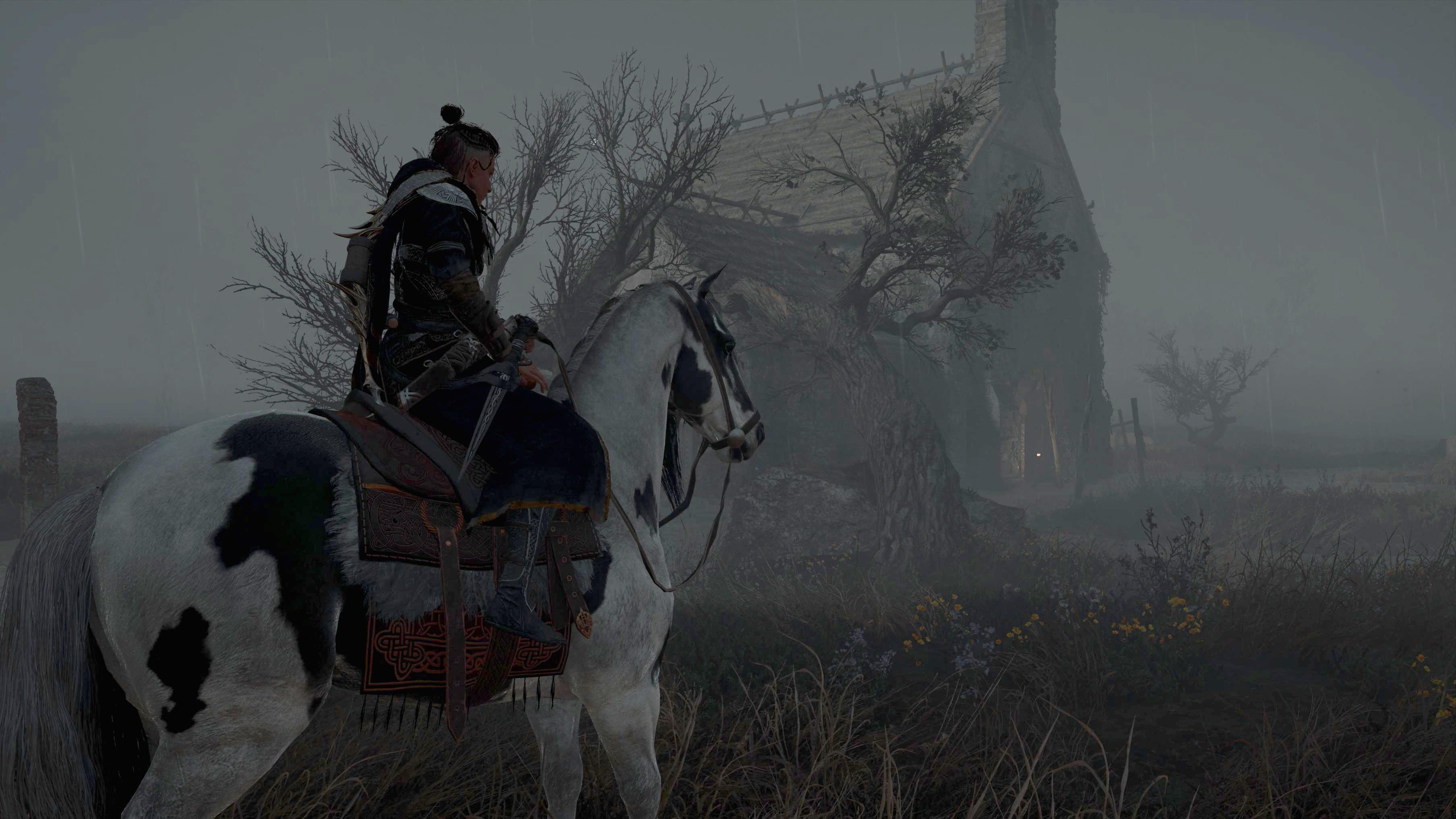 Assassin's Creed Valhalla Snake Irlande