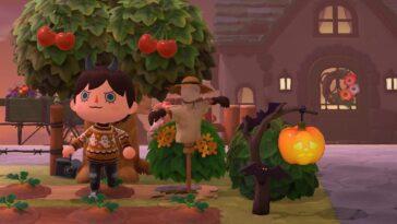 Animal Crossing: New Horizons Le Joueur Transforme L'île En
