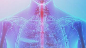 La Recherche Cherche L'évolution Du Cancer De L'œsophage