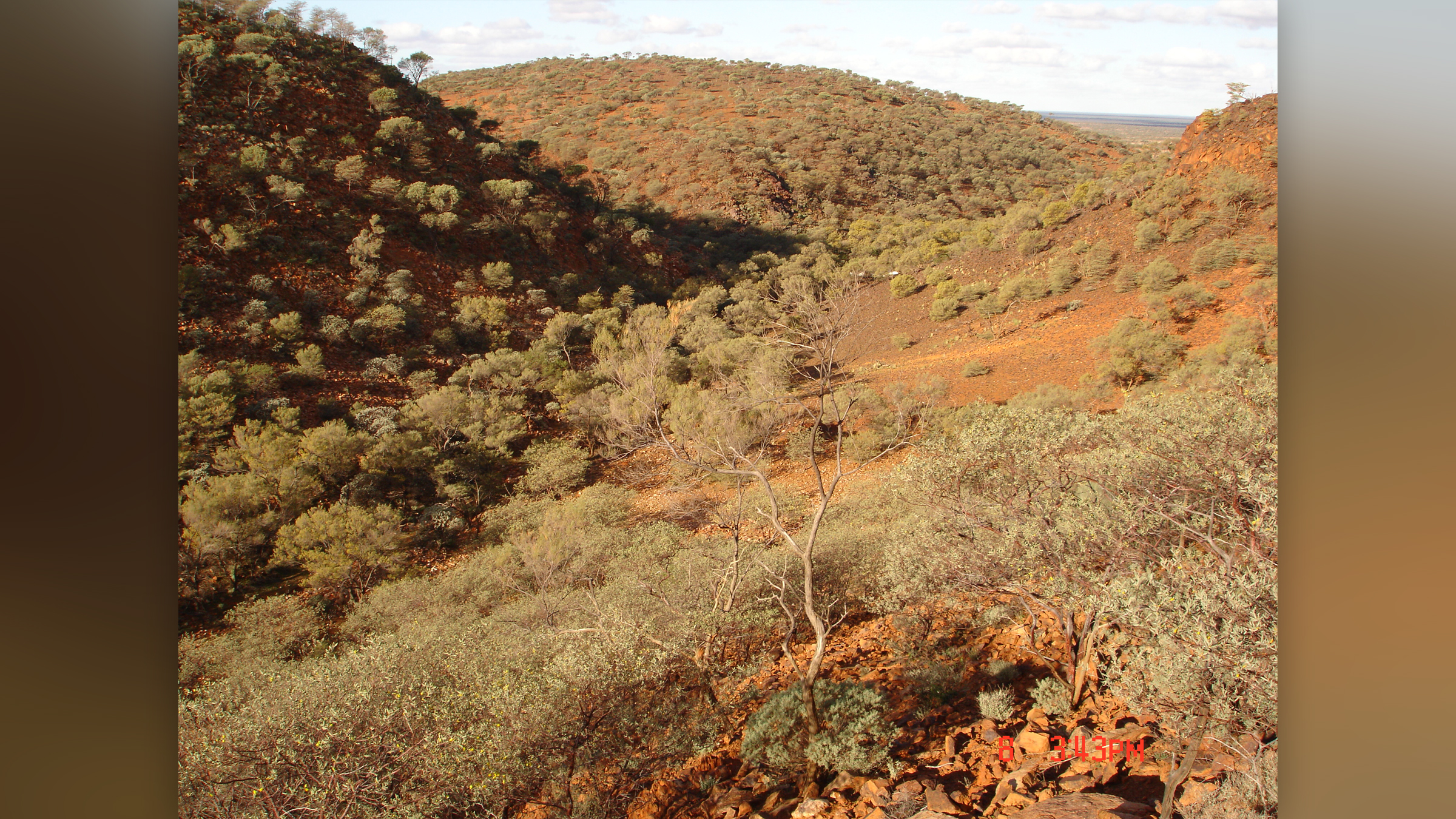 Les Jack Hills de l'Australie occidentale