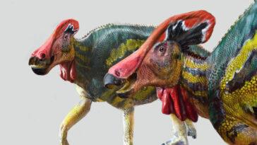 """Le dinosaure """"bavard"""": une nouvelle espèce découverte au Mexique avait une """"trompette interne"""" et portait des couleurs vives, selon des paléontologues"""
