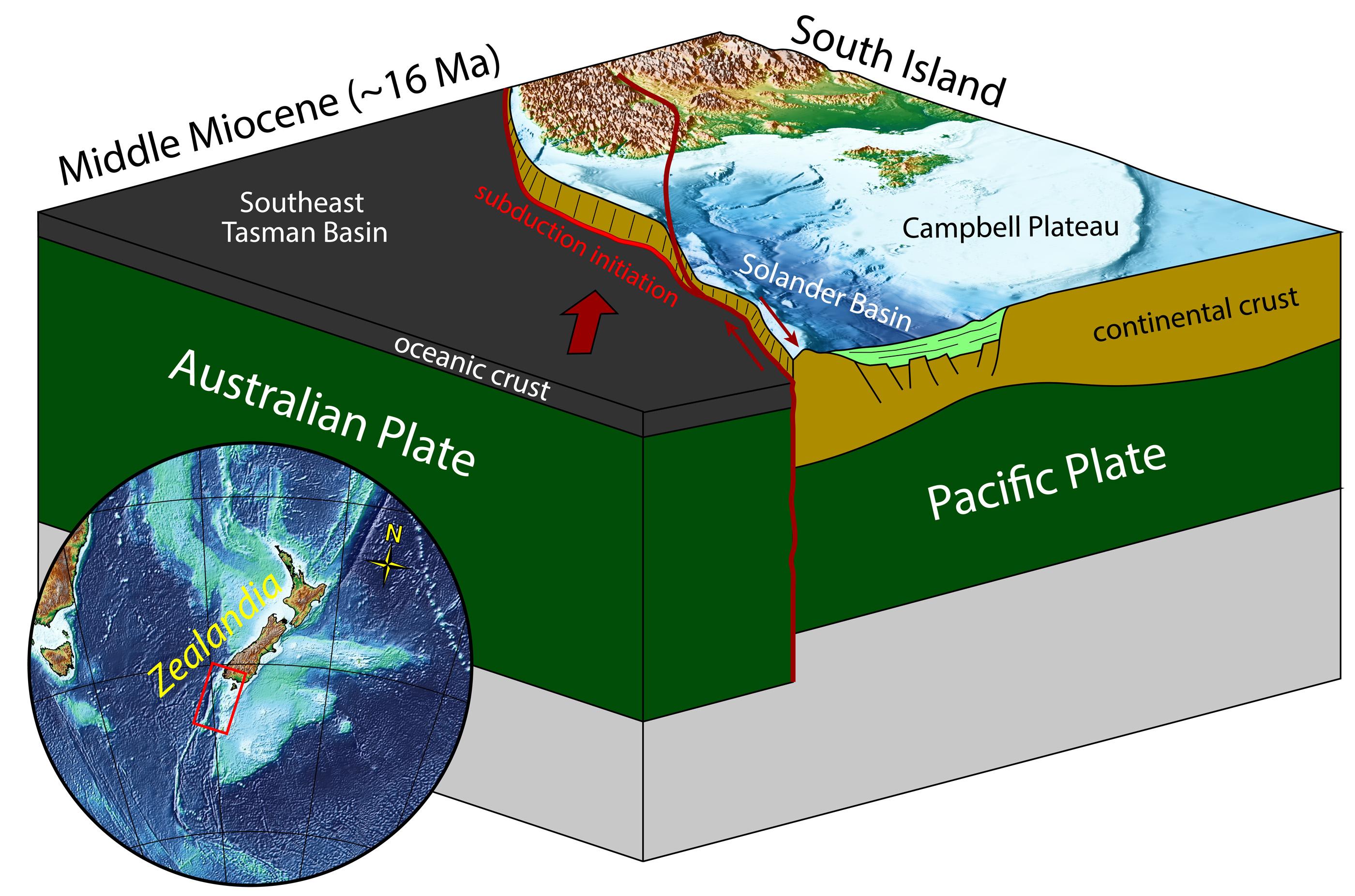 Un schéma montrant la marge de Puysegur au sud de la Nouvelle-Zélande.  Le fond marin, qui s'est étendu il y a 45 millions d'années, a étendu la croûte continentale submergée de Zealandia sur la plaque du Pacifique, créant une région éclaircie dans le bassin de Solander.  Une faille décrochée a amené côte à côte cette croûte continentale affaiblie et cette croûte océanique plus dense de la plaque australienne.  La collision a poussé la croûte océanique dense sous la croûte continentale plus légère, un processus appelé subduction.