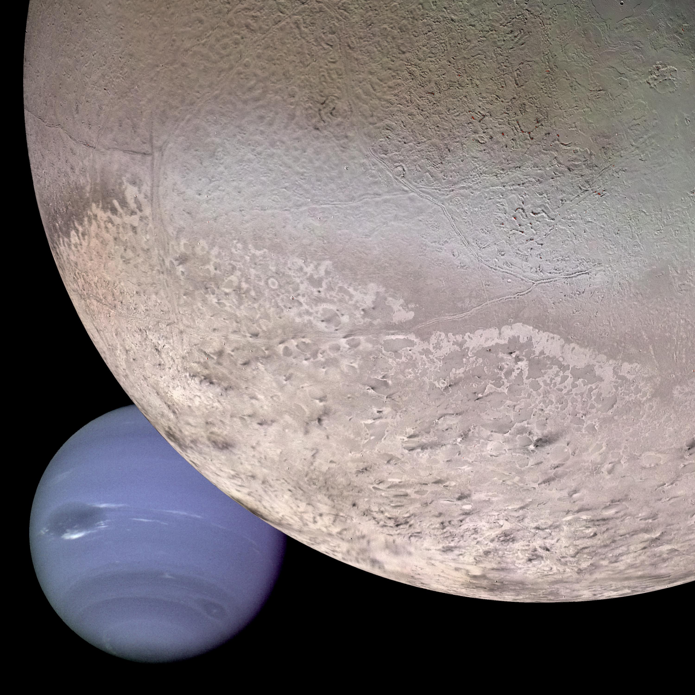 Une combinaison d'images montre comment Neptune et sa plus grande lune Triton ont pu apparaître au vaisseau spatial Voyager 2 en 1989.