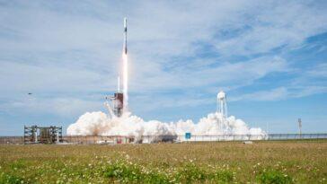 Le Cargo Dragon De Spacex Transporte Des Tardigrades Et Des