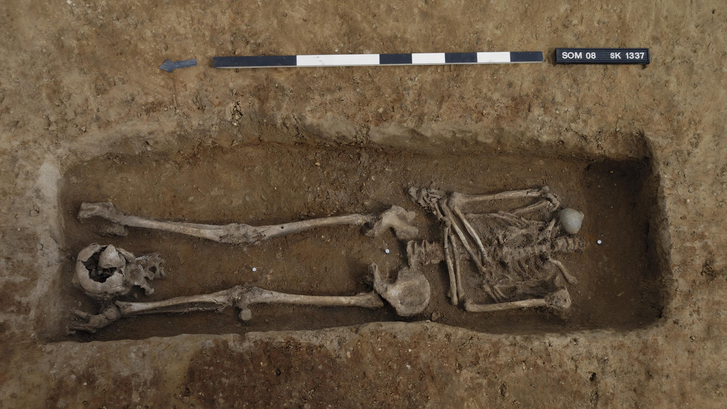 Le crâne de ce squelette décapité a été enterré aux pieds de l'individu.
