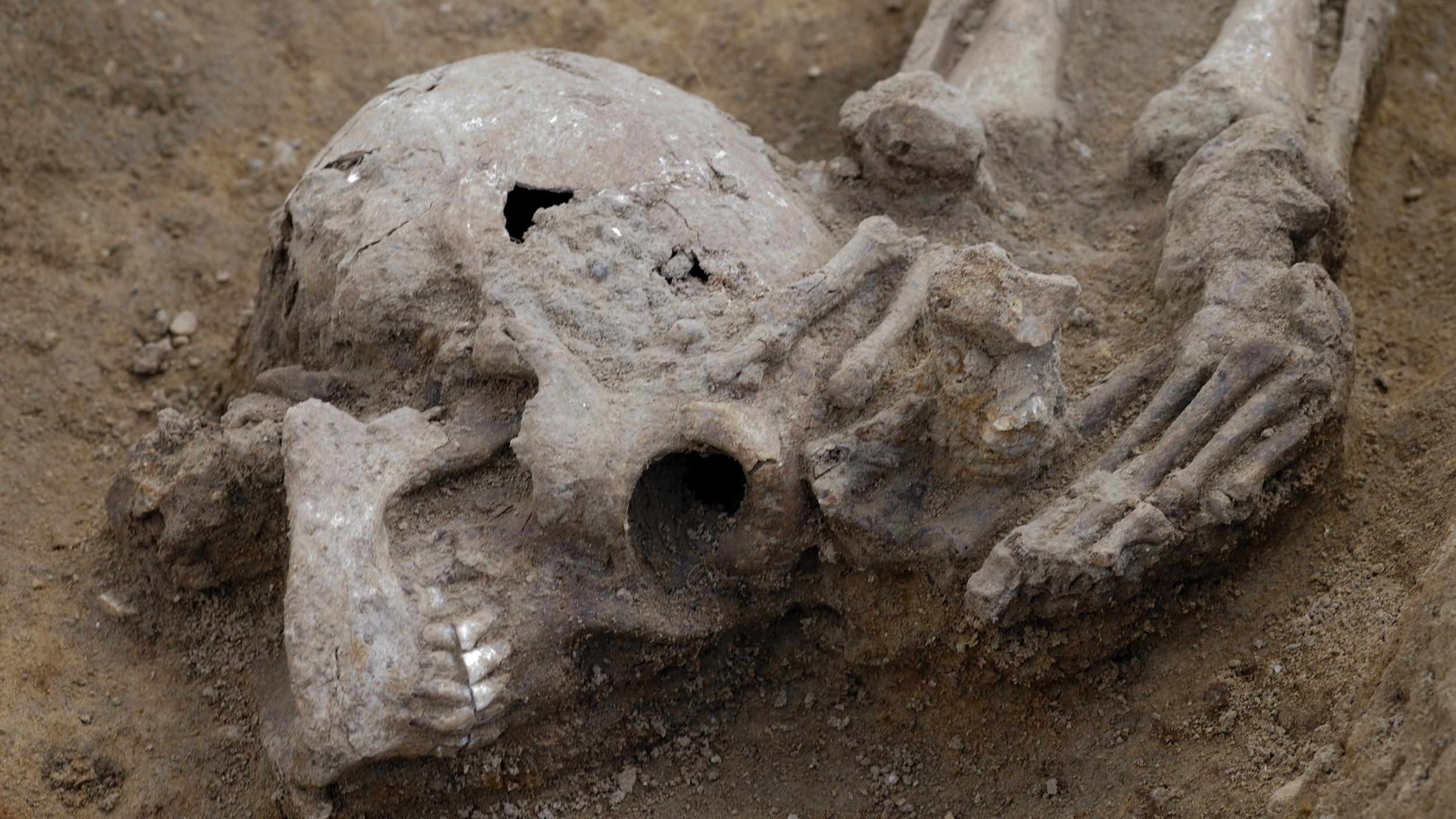 Beaucoup de squelettes décapités avaient la tête enterrée comme celui montré ici.