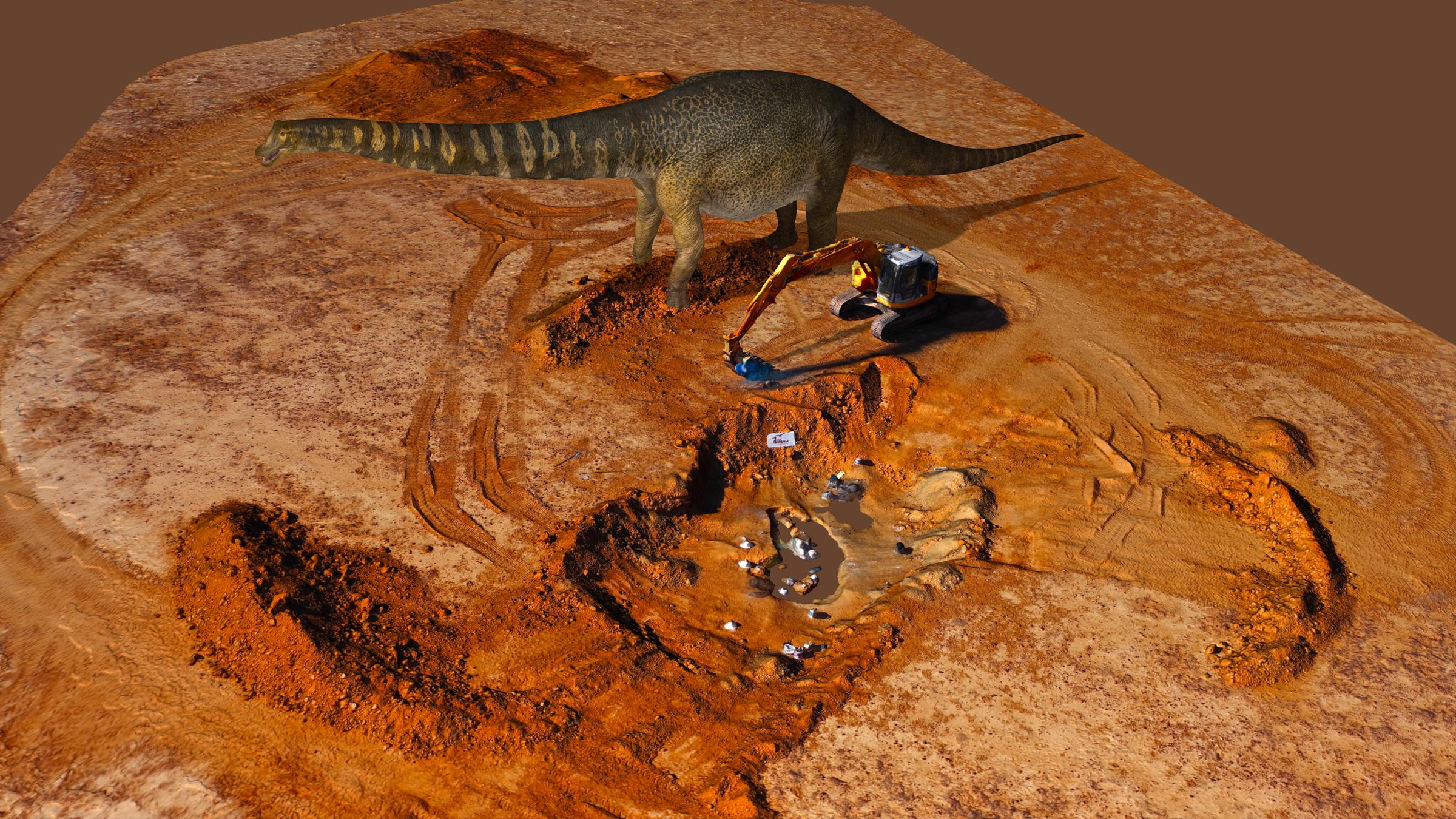 Une image numérique du dinosaure nouvellement décrit, Australotitan cooperensis, à côté de son site de fouilles.
