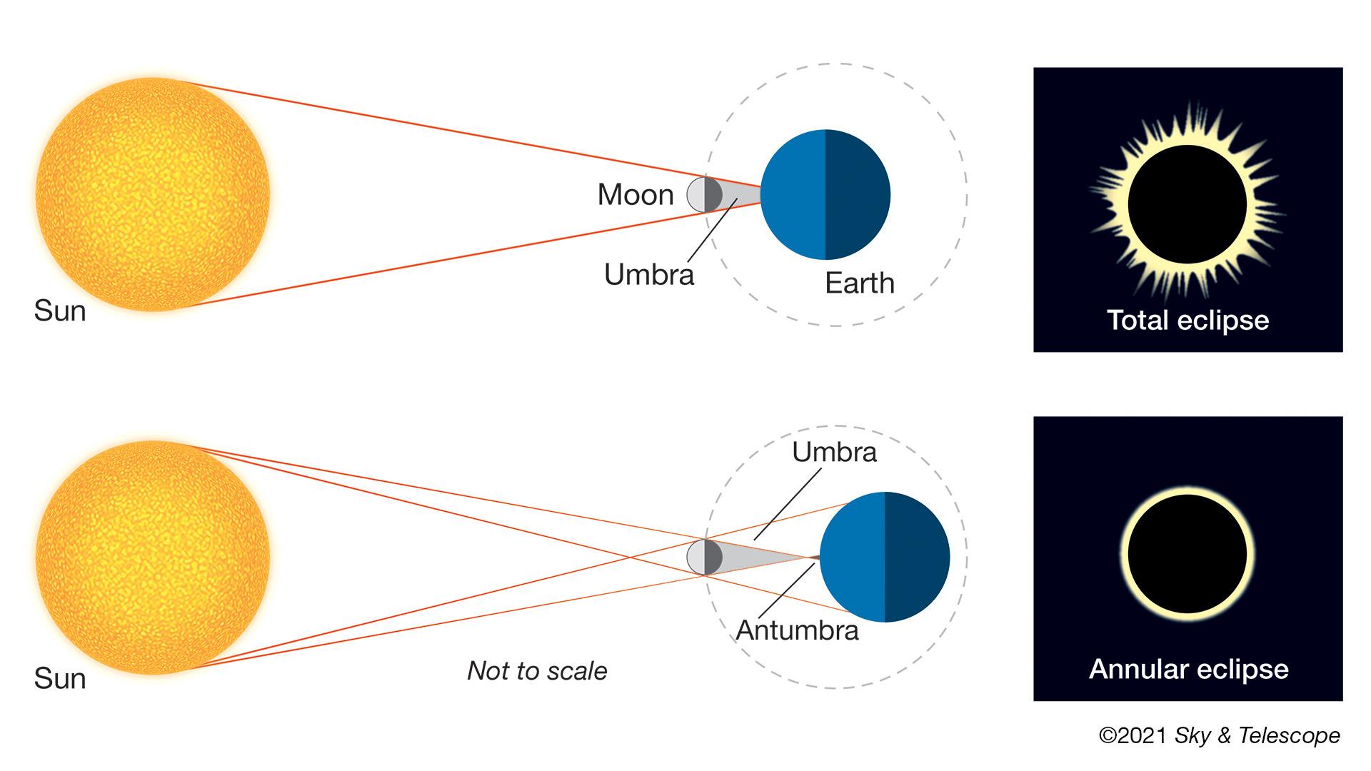 Lorsque la nouvelle lune est juste à la bonne distance sur son orbite pour effacer complètement le soleil, nous assistons à une éclipse solaire totale.  Mais lorsque la nouvelle lune est légèrement plus éloignée de la Terre sur son orbite, elle ne couvre pas tout à fait la totalité du disque solaire.  Dans ces cas, nous pouvons profiter de la vue d'un anneau de soleil flamboyant encerclant la silhouette de la lune, mais nous devons veiller à ne l'observer qu'à travers un filtre solaire sûr.