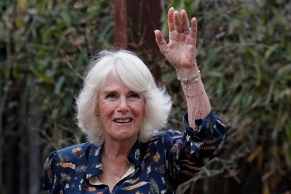 L'image de Camilla a une nouvelle fois été fortement remise en cause.  Photo: (Getty)