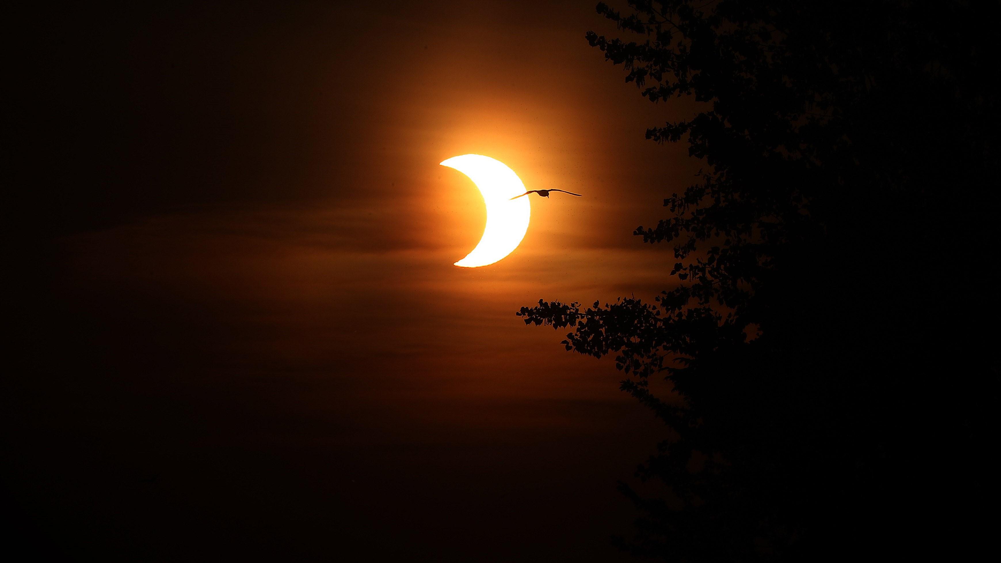 Le soleil éclipsé se levant au-dessus de Toronto le 10 juin 2021, vu par Steve Russell.