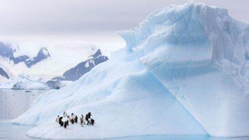 L'antarctique A Probablement été Découvert 1 100 Ans Avant Que