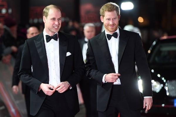 les princes Harry et William.  Photo: (Getty)