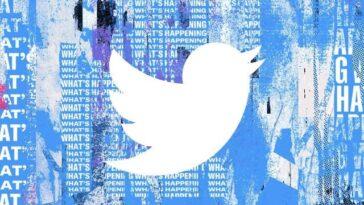 Twitter Introduit L'option De Langue «arabe (féminin)» Pour Les Utilisateurs