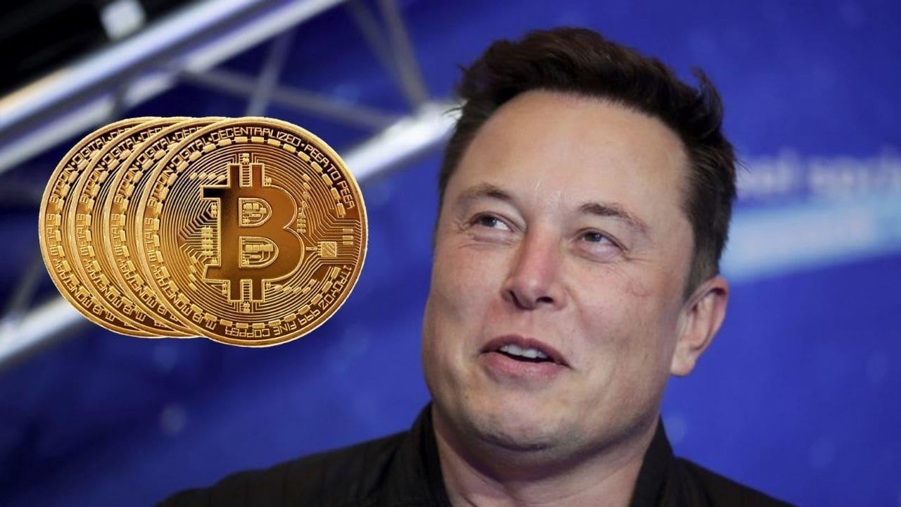 Image du PDG de Tesla, Elon Musk : AP Image ;  Créatif:tech2/Nandini Yadav