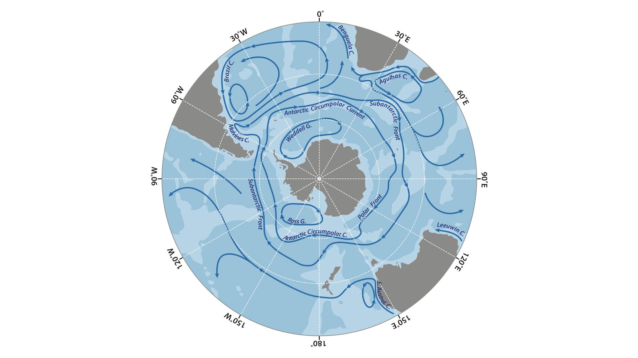 Le courant circumpolaire antarctique (ACC), qui se déplace d'ouest en est, définit les limites de l'océan Austral.