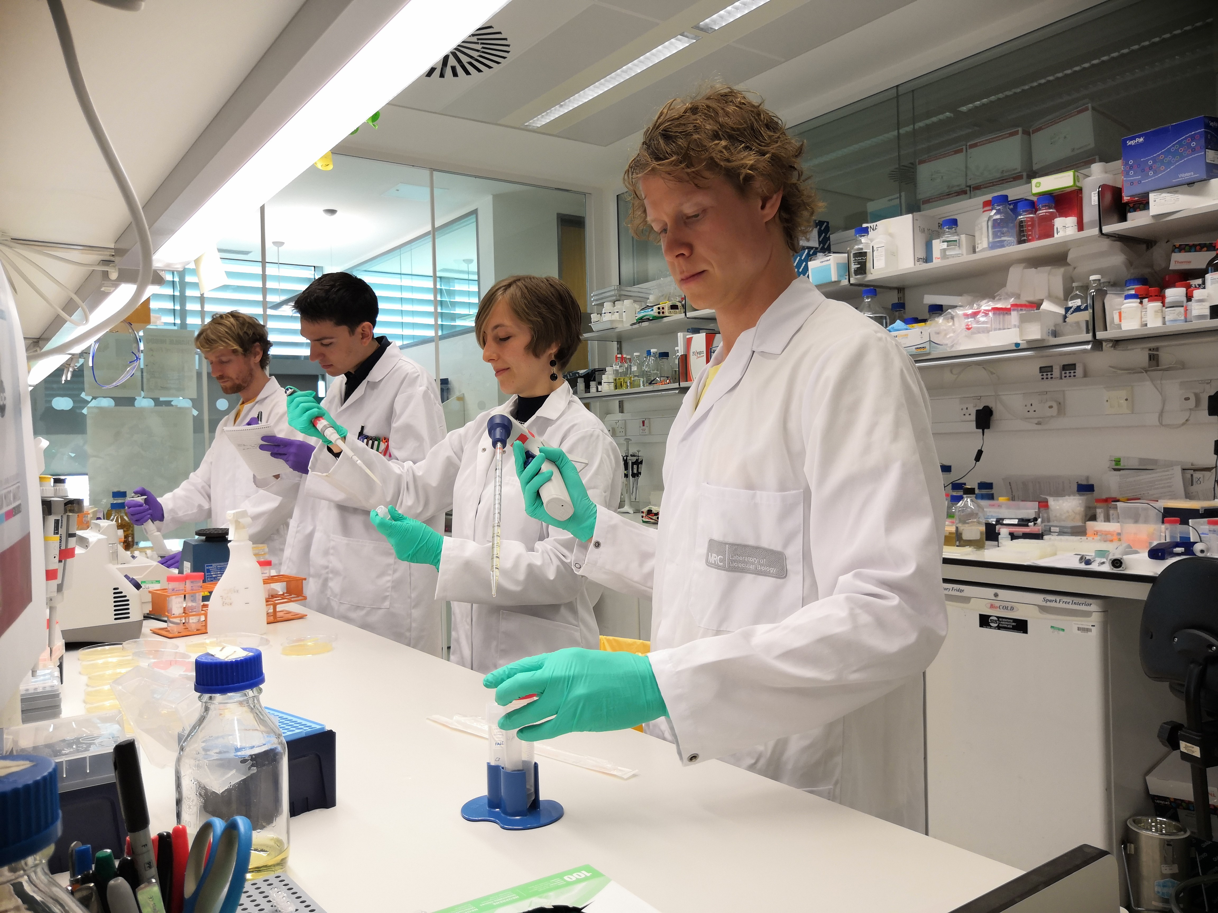 4 scientifiques travaillant sur une paillasse