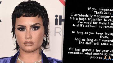 Demi Lovato Dit Que Ce N'est Pas Grave Si Vous