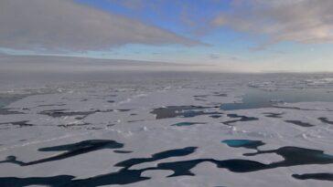 La «dernière Zone De Glace» De L'arctique Surprend Les Scientifiques