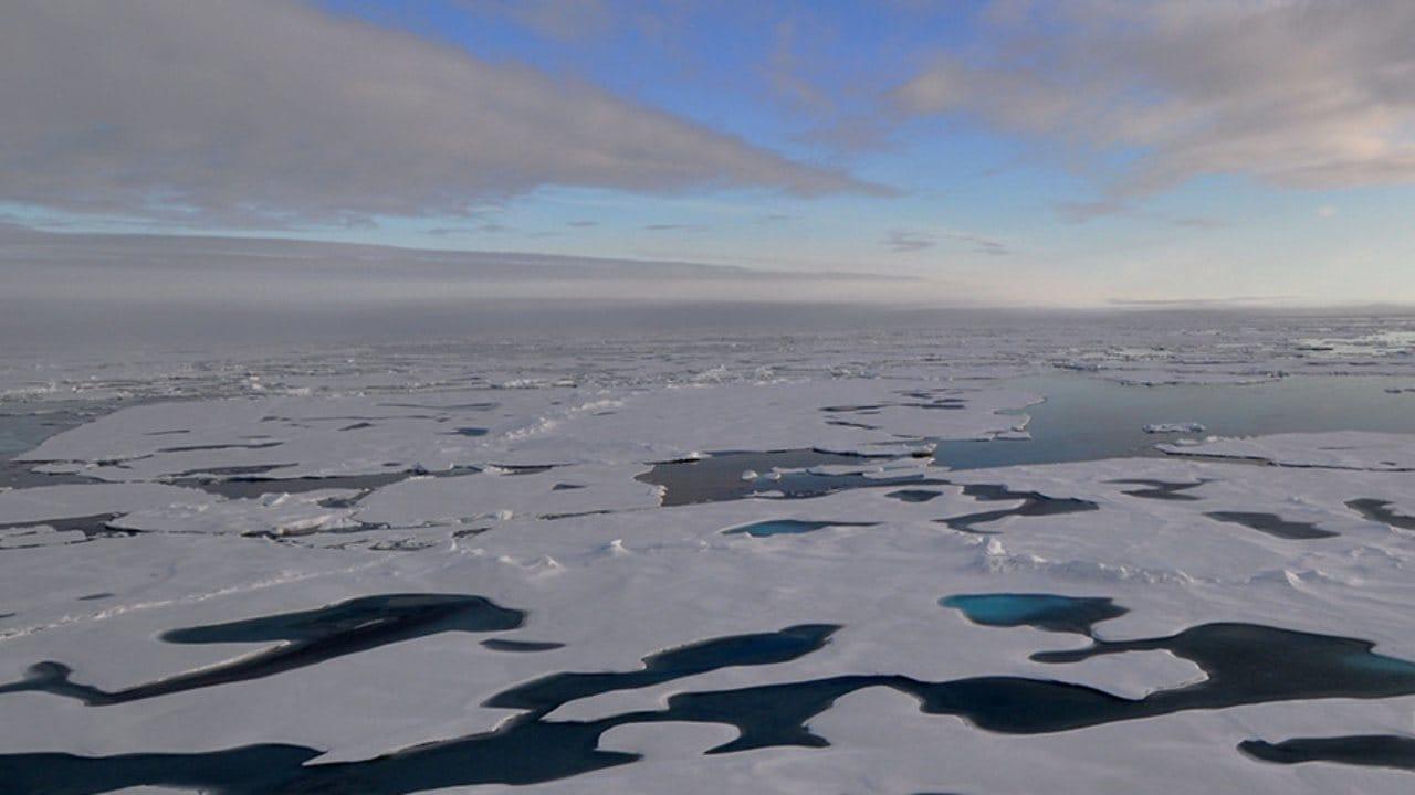 C'est ce qu'on appelle la «dernière zone de glace» parce que la glace de mer flottante y est généralement si épaisse qu'elle est susceptible de résister au réchauffement climatique pendant des décennies environ.  Crédit image: NOAA