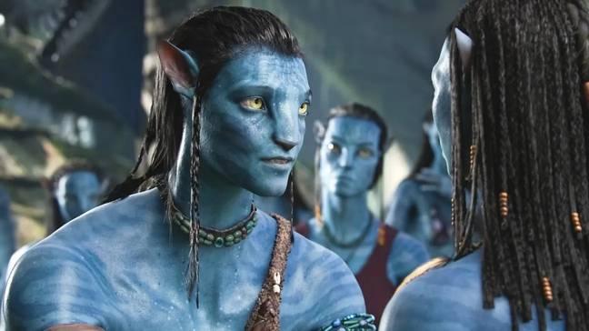 Matt Damon a raté un gros coup dur lorsqu'il a refusé le rôle principal dans Avatar.  Crédit : Renard