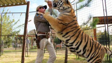 Netflix confirme la sortie de Tiger King 2