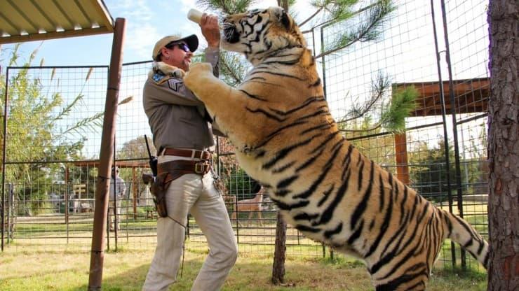 Netflix confirme la sortie de Tiger King 2.