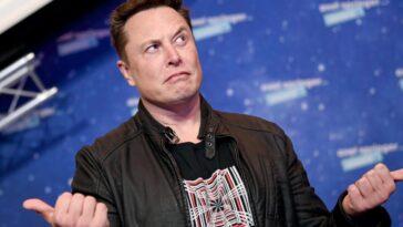 Elon Musk est un fan d'anime : quels sont vos préférés ?